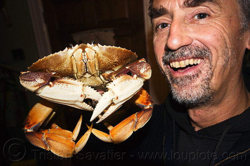 dungeness crab and me - tristan savatier, dungeness crab, food, man, metacarcinus magister, seafood, self portrait, selfie, tristan savatier