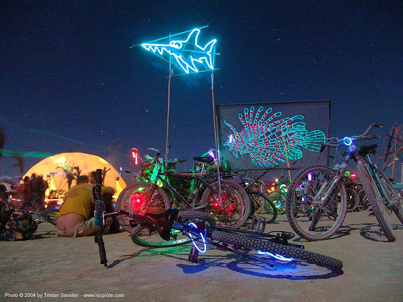 EL-wire art, art, burning man, el-wire, electroluminescent wire, fishes, night