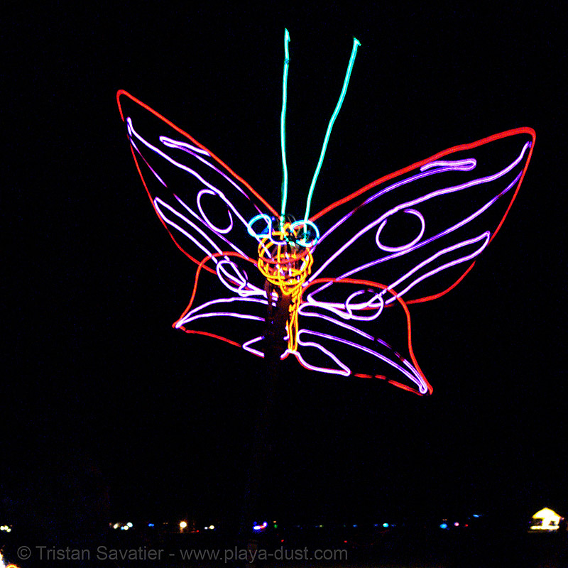 EL-wire butterfly - burning-man 2006, art, burning man, el-wire, electroluminescent wire, glowing, night