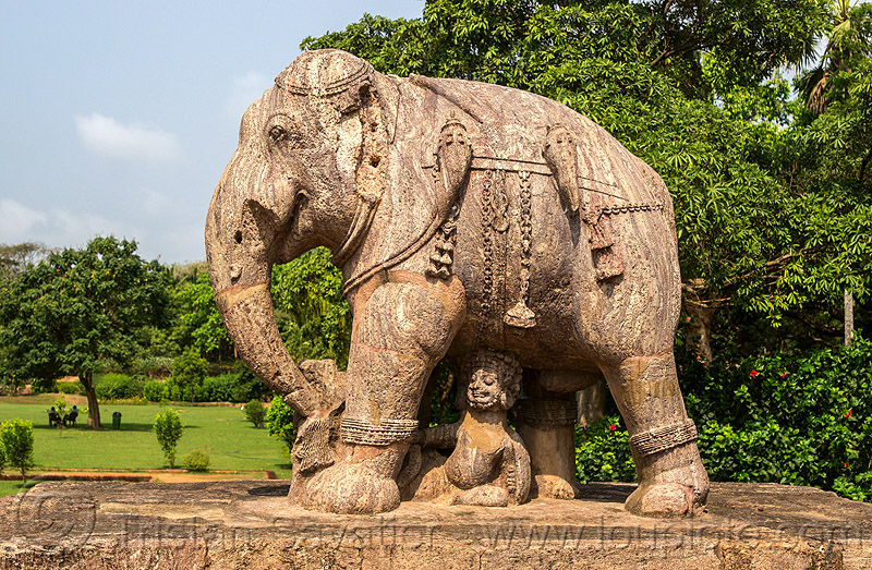 elephant sculpture - konark sun temple (india), hindu temple, hinduism, india, konark sun temple, sculptures, statue, stone elephant