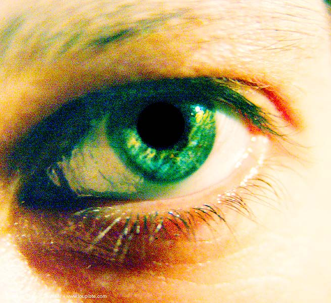 eye - anke-rega, anke rega, cross-processed, dxpro, left eye, woman, ประเทศไทย