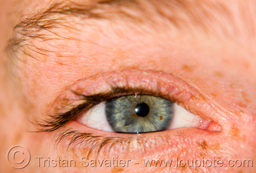eye - gabrielle - burning man 2008, burning man, close up, eye color, eyelashes, freckles, gabrielle, iris, macro, pupil, right eye, spots, woman