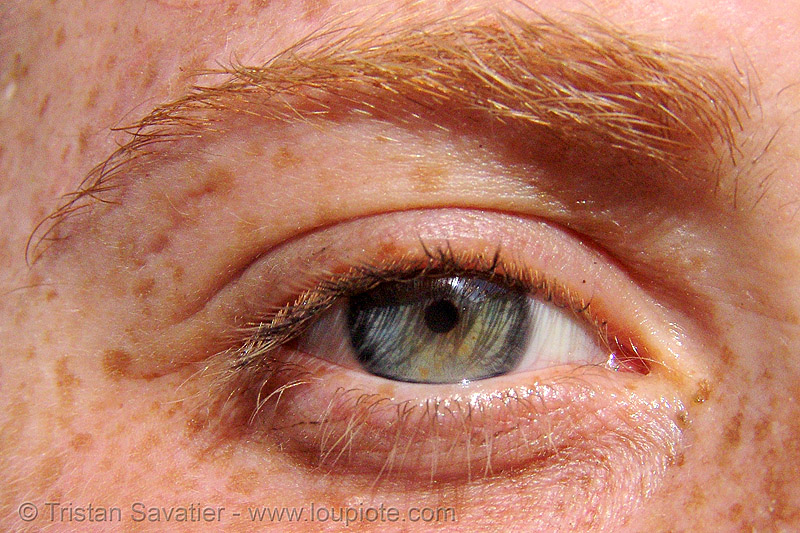 eye of redhead girl - close-up - freckles of skin, close up, eye color, eyelashes, freckles, iris, red hair, redhead, woman
