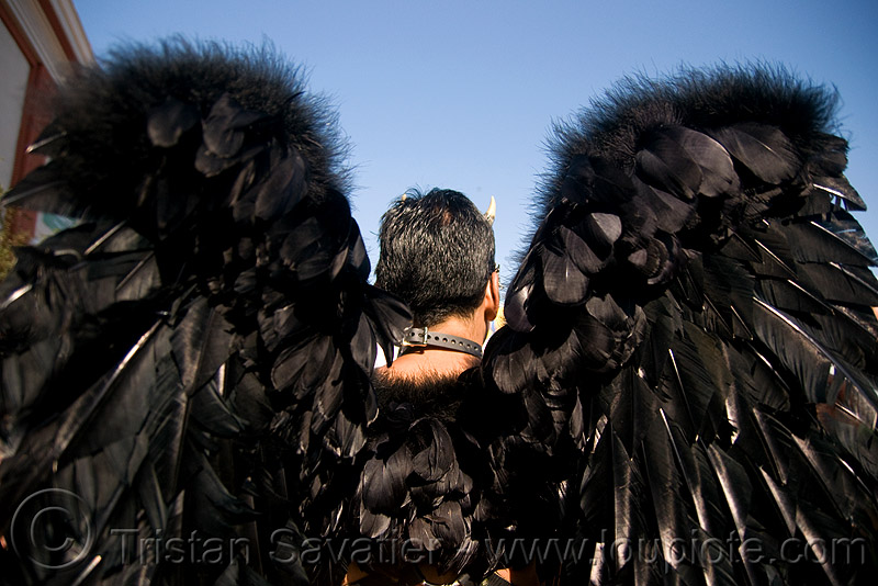 feather angel wings - black angel - folsom street fair 2008 (san francisco), angel wings, black feathers, costume, man