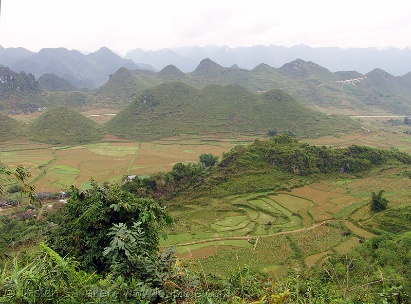 fields near Tám Sơn - vietnam, fields, tám sơn, vietnam