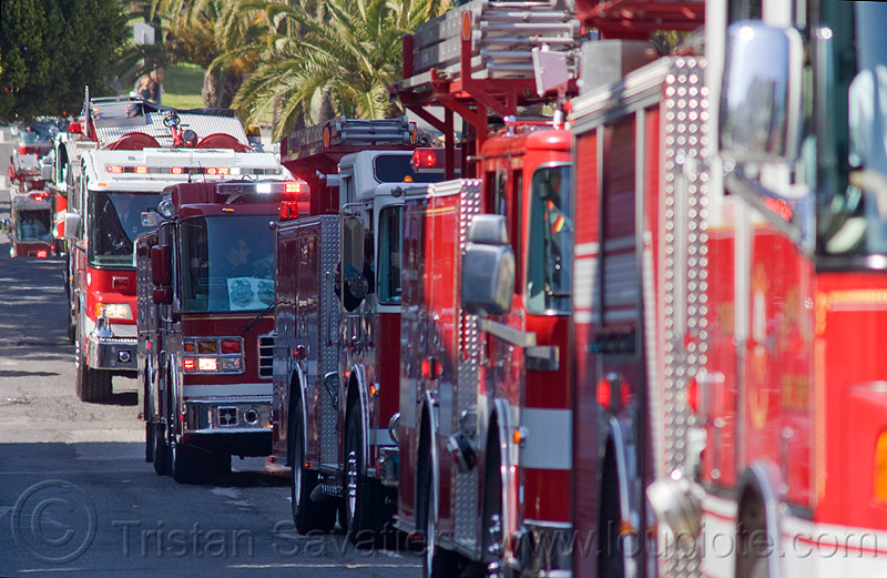 fire trucks procession, fire department, fire engines, fire trucks, procession, sffd, street
