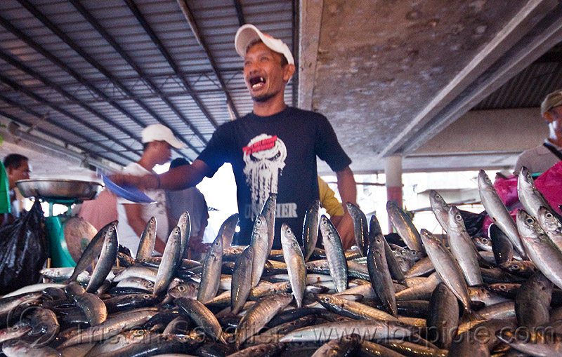 fish market merchant, dead fishes jumping, food, lahad datu, men, people, seafood, vendors
