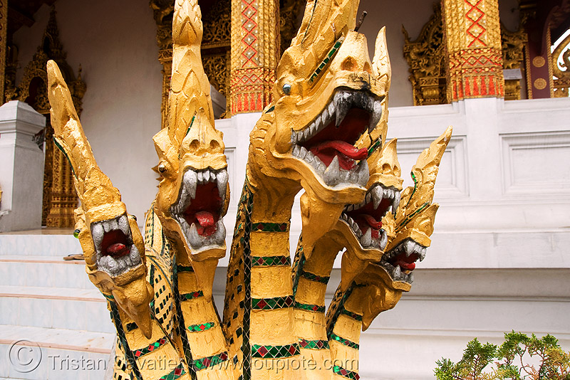 five-headed Nāga snake in temple - luang prabang (laos), buddhism, five headed, luang prabang, naga snake, nāga dragon, nāga snake, sculpture
