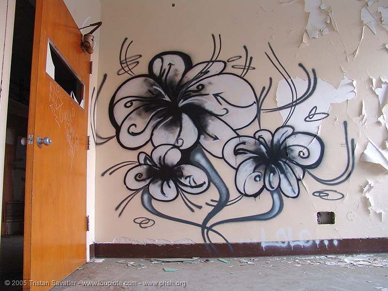 flowers graffiti by LOLO (san francisco), abandoned building, abandoned hospital, flowers, graffiti, lolo, presidio hospital, presidio landmark apartments, trespassing