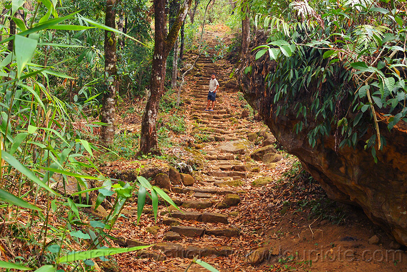 foot path with stone steps in the east khasi hills (india), jungle, man, mawlynnong, meghalaya, people, rain forest, stairs, stones, trail
