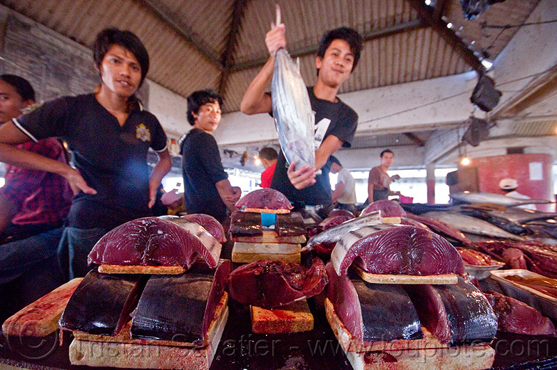 fresh tuna fish, fish market, fishes, food, lahad datu, men, merchant, seafood, tuna, vendors