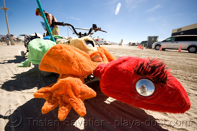 fuzzy gecko - burning man 2008, burning man, colored, fuzzy, gecko, unidentified art car