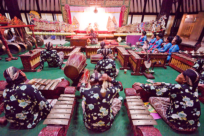 gamelan orchestra playing - yogyakarta  (java), drums, gamelan ensemble, gongs, indonesia, jogja, karawitan, kendang drum, men, metallophones, music, musical, orchestra, percussion, shadow play, shadow puppet theatre, shadow puppetry, shadow puppets, shadow theatre, sitting, wayang kulit, women, xylophones, yogyakarta