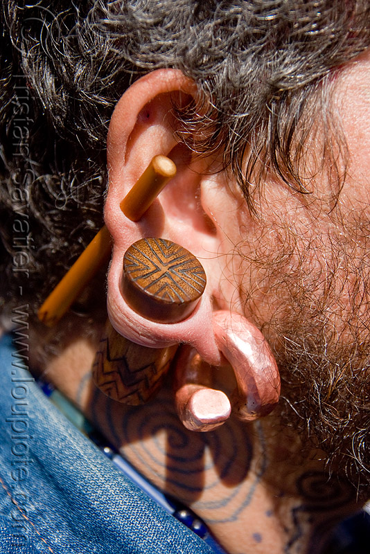 gauged ear, brass, dore alley fair, ear gauging, ear piercings, ear rim piercing, earlobe, earring, gauged ears, helix piercing, jewelry, man, plug, stretched earlobes, stretched piercing, wood