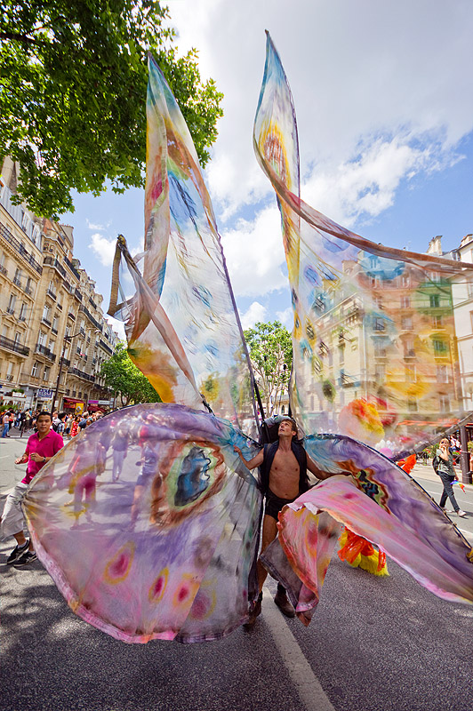 giant butterfly costume, butterfly costume, festival, gay pride, man, paris, street, wings