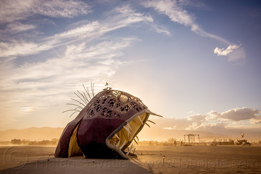 giant fish monster - illumacanth - burning man 2015, art installation, burning man, clouds, deep sea fish, illumacanth, sculpture, teeth