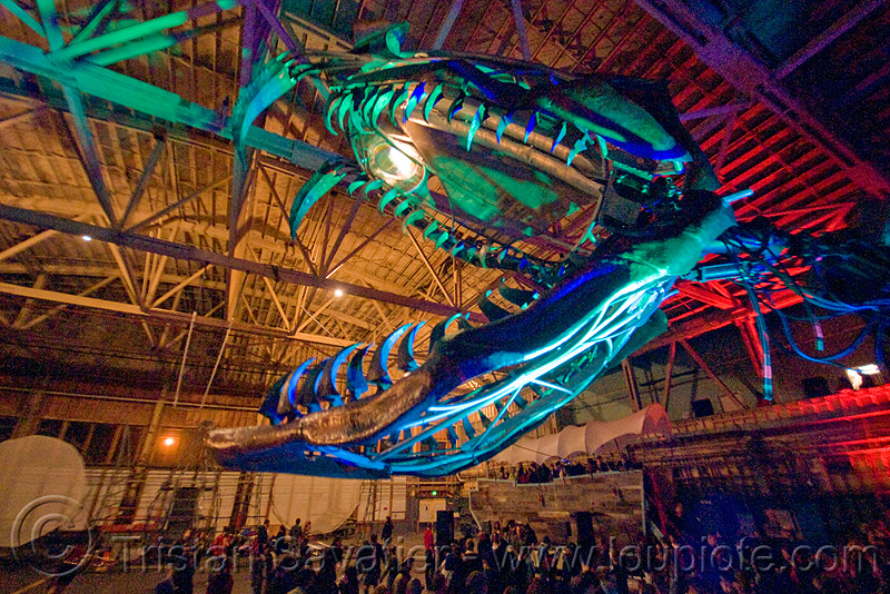 giant snake skeleton animated sculpture - opulent temple massive rave party (treasure island, san francisco) - serpent mother, art, art installation, fangs, flaming lotus girls, green laser, head, laser lightshow, laser show, night, teeth