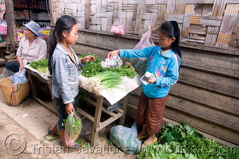 girls dealing in market (laos), bank notes, buyer, buying, children, dealing, farmers market, food, herbs, kids, laos, little girl, money, produce, seller, selling, vegetables