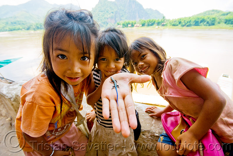 "girls playing with small blue-tail lizard - ""pak ou"" caves near luang prabang (laos), blue-tail, blue-tailed, children, hand, kids, little girls, lizard, luang prabang, mekong, pak ou caves temples, reptile, river"