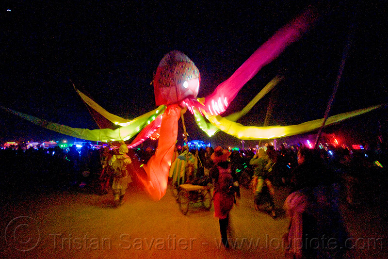 glowing octopus - burning man 2009, burning man, night, octopus, unidentified art