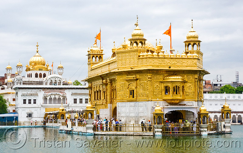 golden temple - amritsar (india), amritsar, golden temple, gurdwara, india, punjab, sikh, sikhism