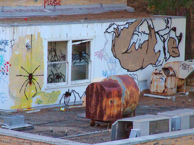 graffiti - dog up-side down - abandoned hospital (presidio, san francisco) - phsh, abandoned building, abandoned hospital, dog, graffiti, presidio hospital, presidio landmark apartments, street art, trespassing