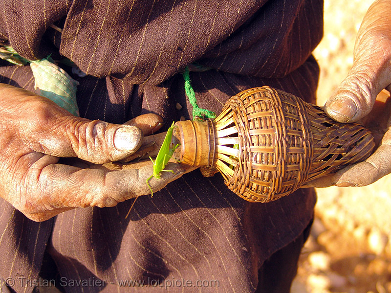grasshopper bottle - vietnam, bugs, eating bugs, eating insects, edible bugs, edible insects, entomophagy, hands, hill tribes, indigenous, old man, people, rattan, rattan bottle