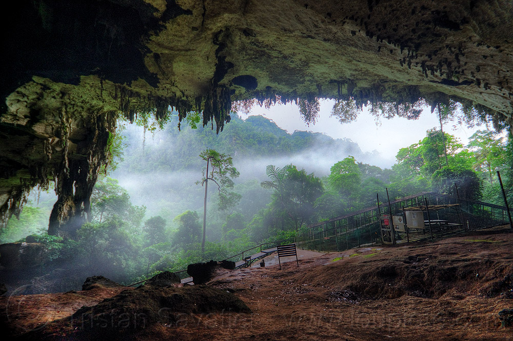 niah caves, backlight, cave, cave formations, cave mouth, caving, concretions, fog, forest, hazy, jungle, misty, natural cave, rain forest, speleothems, spelunking, stalactites