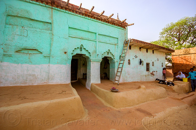 green house with earthen floor patio in indian village, adobe floor, earthen floor, goats, green house, india, khoaja phool, ladder, village, खोअजा फूल