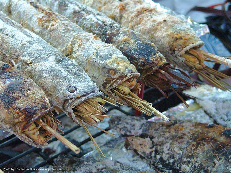 grilled mekong fishes - thailand, catfish, cooked, cooking, food, fresh-water fishes, grilled fishes, mekon fishes, nong khai, panned, street seller, thailand
