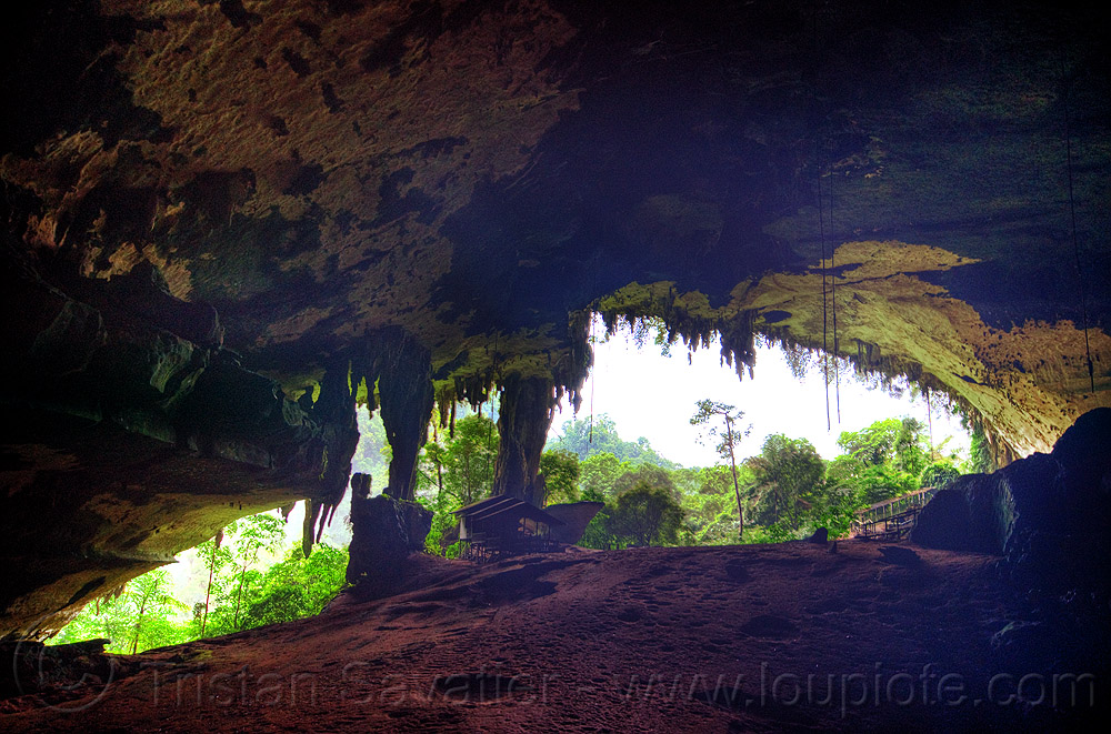 gua niah - niah caves (borneo), backlight, borneo, cave formations, cave mouth, caving, concretions, gua niah, jungle, malaysia, natural cave, niah caves, rain forest, speleothems, spelunking, stalactites