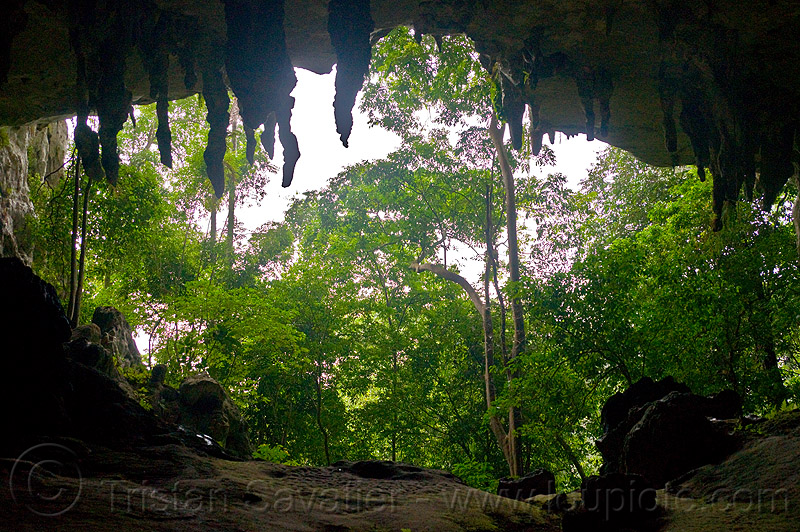 natural cave in rain forest (borneo), backlight, cave formations, cave mouth, caving, concretions, niah, niah caves, niah painted cave, speleothems, spelunking, stalactites