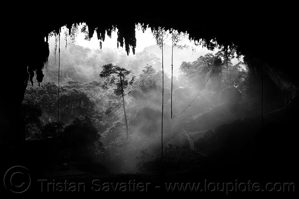natural cave in rain forest (borneo), backlight, birds-nest, cave formations, cave mouth, caving, concretions, fog, foggy, hazy, misty, niah, niah caves, speleothems, spelunking, stalactites