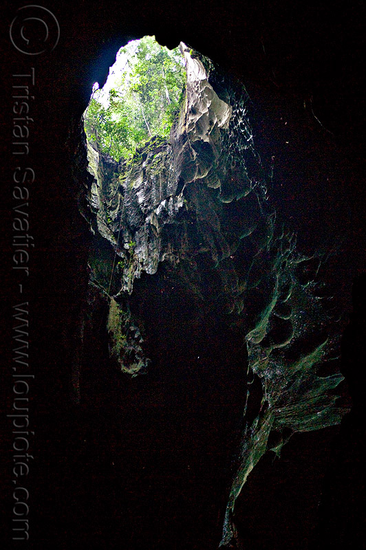 sinkhole in roof of natural cave, backlight, caving, forest, jungle, niah, niah caves, rain forest, spelunking