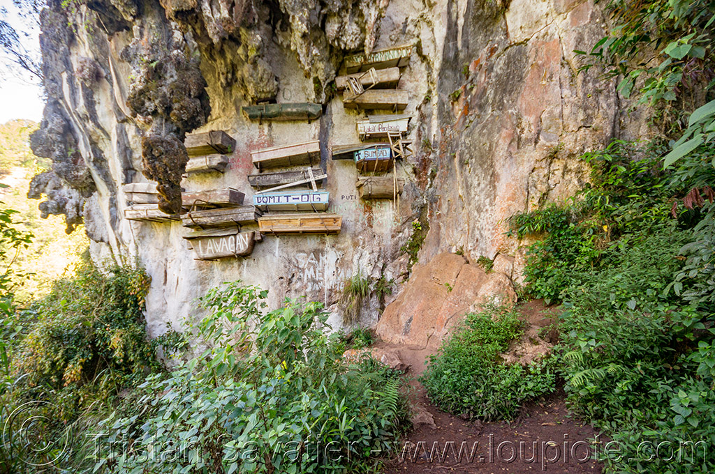 hanging coffins on cliff (philippines), cemetery, cliff, echo valley, grave, hanging coffins, philippines, sagada, tomb