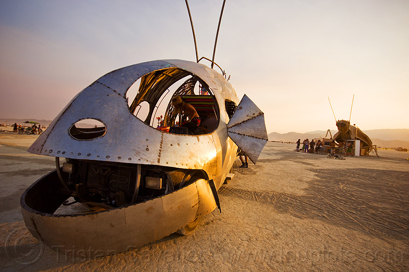 head of pilot fish art car - burning man 2013, dr harry adelson