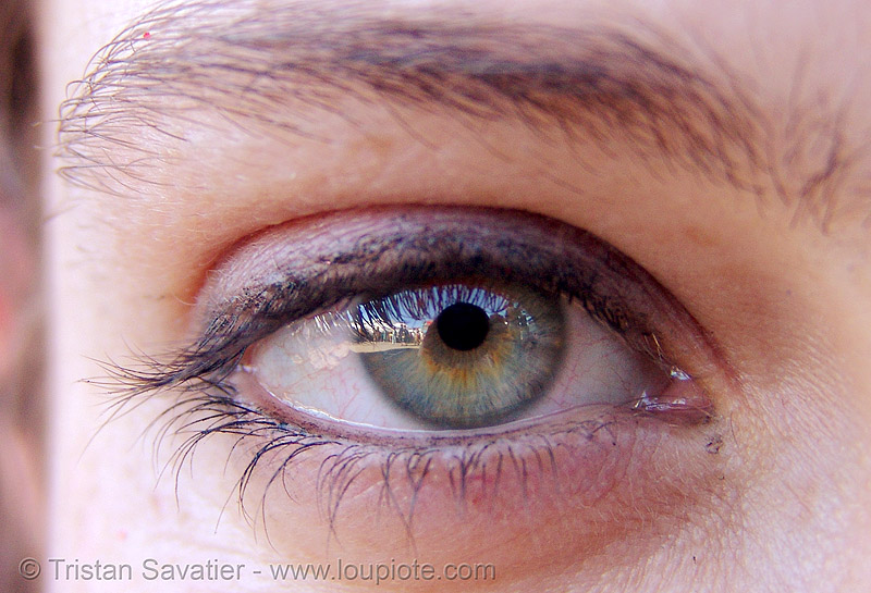 helena's eye, close up, eye color, eyelashes, helena, iris, macro, pupil, right eye, woman