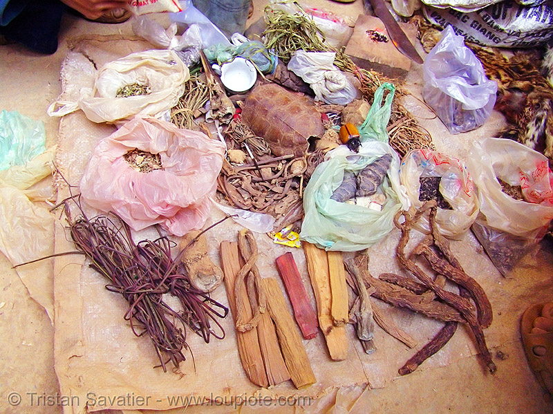 herbal and natural medicines used by shaman, healer, healing, hill tribes, indigenous, market, medicine man, mèo vạc, vietnam shaman