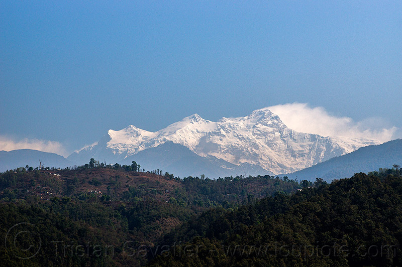himalchuli mountain - himalayas (nepal), forest, hills, himalchuli, mount, mountains, peak, snow, summit