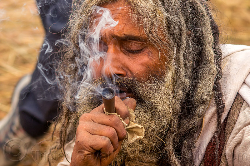 hindu baba smoking chillum - ritual cannabis, baba, beard, chillum, dreadlocks, ganja, hindu pilgrimage, hinduism, india, maha kumbh mela, man, pipe, sadhu, smoke, smoking, weed