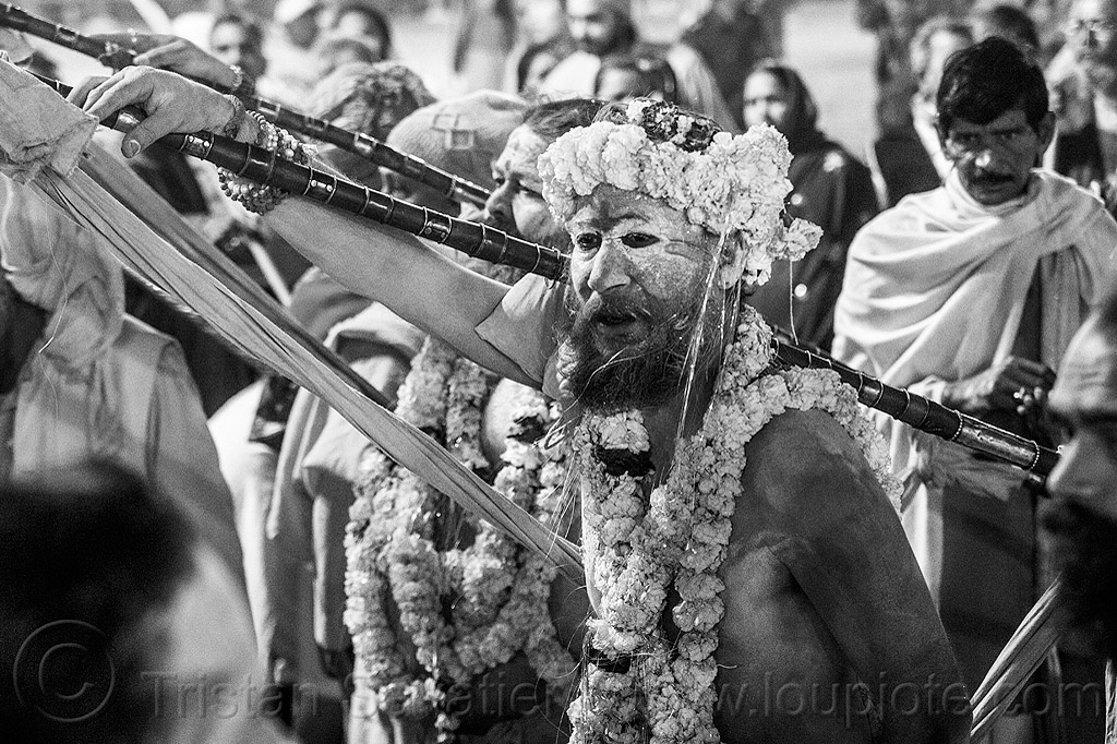 hindu devotees wearing strings of marigold flowers - kumbh mela 2013 festival (india), babas, crowd, dawn, flower necklaces, hinduism, holy ash, kumbha mela, maha kumbh, maha kumbh mela, men, naga babas, naga sadhus, naked, night, orange flowers, people, poles, procession, sacred ash, sadhu, sangam, staff, staves, triveni sangam, vasant panchami, vasant panchami snan, vibhuti, walking