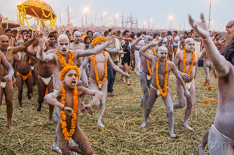 hindu men covered in white vibhuti holy ash running toward the ganges river - kumbh mela 2013 (india), boy, crowd, dawn, flower necklaces, hay, hindu pilgrimage, hinduism, holy ash, india, maha kumbh mela, marigold flowers, men, naga babas, naga sadhus, running, sacred ash, sadhu, triveni sangam, vasant panchami snan, vibhuti, walking