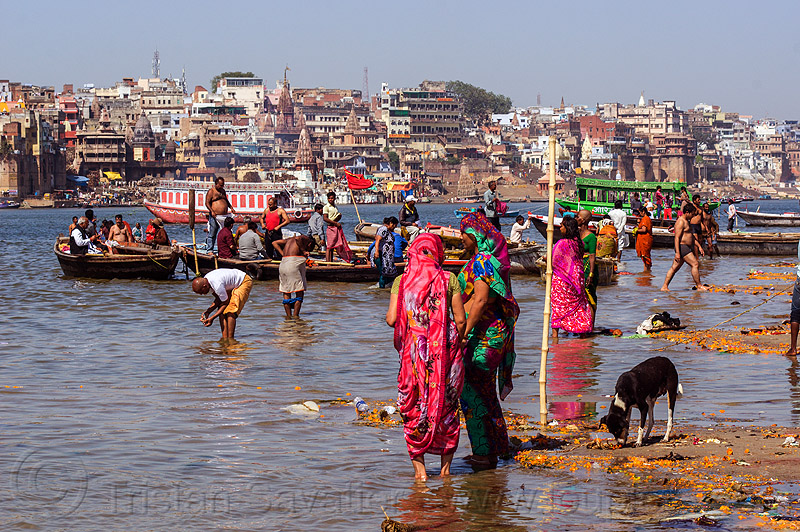 hindu pilgrims having holy dip in ganges river - varanasi (india), bath, bathing, boat, ganga, ganga river, ghats, hinduism, people, river boat, rowing boat, small boat, water