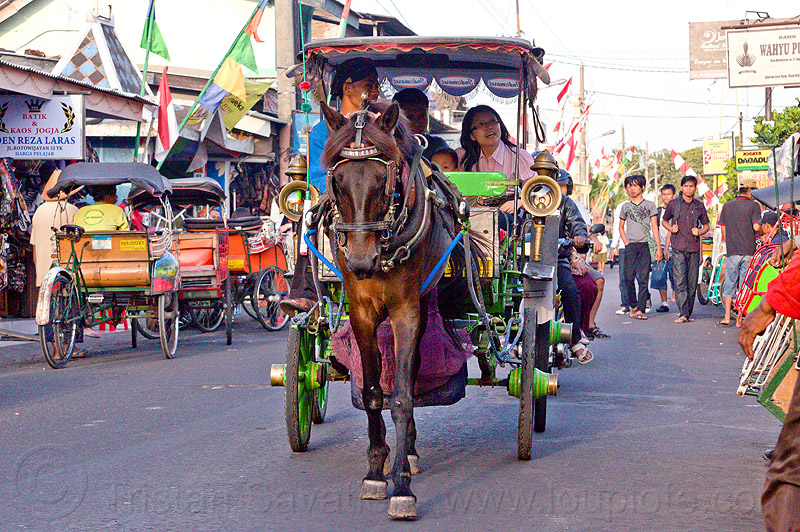 horse carriage in jogja, draft horse, draught horse, horse carriage, java, jogja, jogjakarta, street, yogyakarta