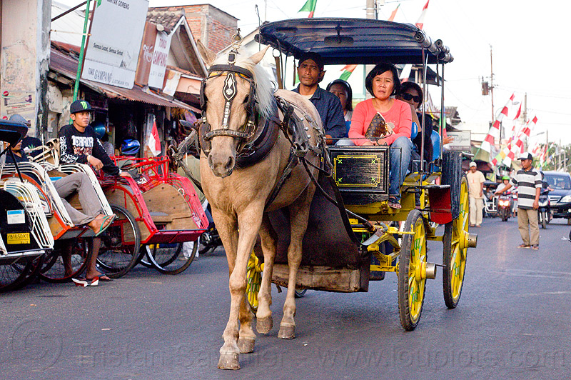 horse carriage in jogja street, draft horse, draught horse, horse carriage, java, jogja, jogjakarta, street, yogyakarta