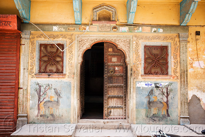 house door - jaipur (india), decorated, door, jaipur, old, painted, street