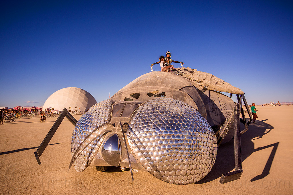 house fly art car - superfly - cirque de soleils - burning man 2015, 2015, burning, cirque de soleils, compound eyes, dsc02057, giant, head, house fly art car, insect, man, superfly art car, the superfly