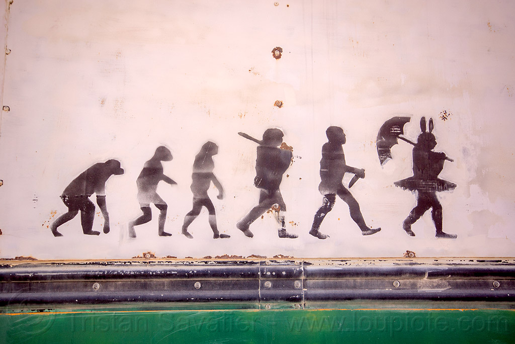 human evolution - burning man 2015, ape, art, bunny, evolution, graffiti, human, paint, stencil, tutu, umbrella