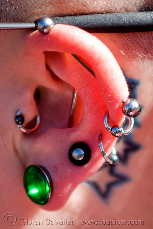 industrial (scaffold) ear piercing, barbell, cartilage piercing, ear piercings, ear rim piercing, earlobe, earrings, gauged ears, helix piercing, industrial piercing, jewelry, leah, scaffold piercing, stretched earlobes, tattooed, tattoos, tragus piercing