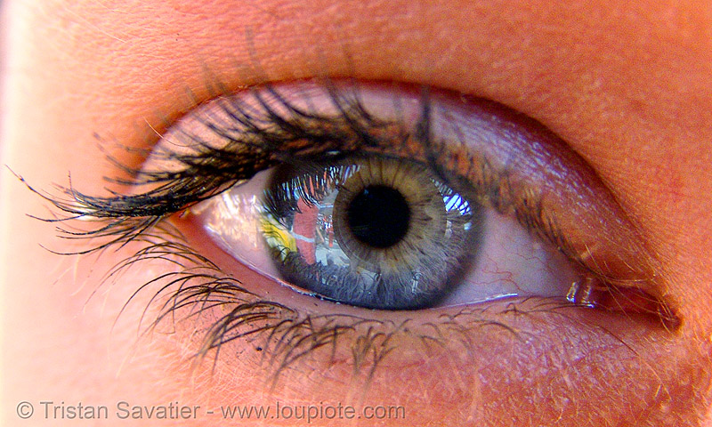 is that your eye?, burning man, close up, eye color, eyelashes, iris, macro, mascara, pupil, right eye, woman